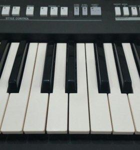 Репетитор по фортепиано, сольфеджио.