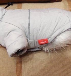 Жилет утепленный для маленькой собаки.