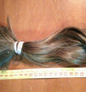Волосы пучек