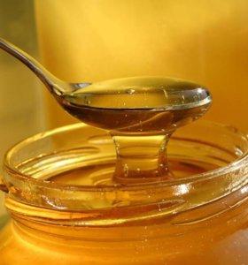 Мёд свежий