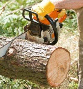 Вырубка деревьев, мелколесья, корчевание, вспашка