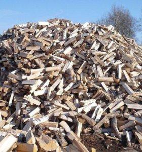 дрова колотые березовые