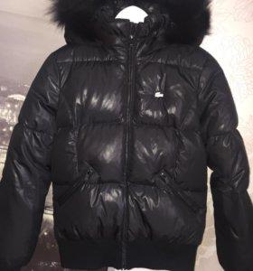 Зимняя куртка Lacoste