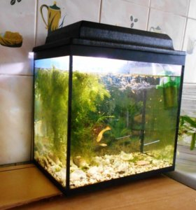 аквариум 28 л