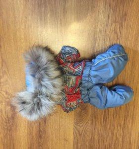 Одежда для собак: комбинезон; куртка; свитер.