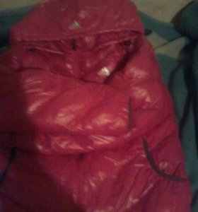 Куртка демисизонная Adidas