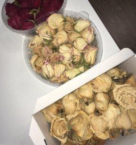 Сухие розы для творчества