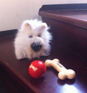 Игрушечная Собака Бакстер .