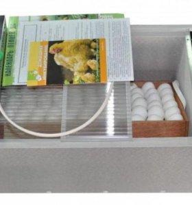 Продам инкубаторы Блиц Норма - 72 Ц8(новинка)