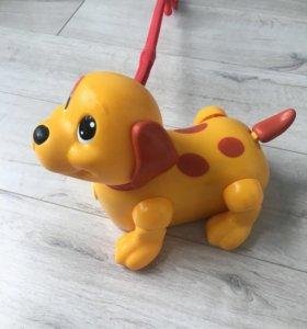 Собачка Tomy