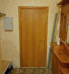 Дверь входная внутренняя