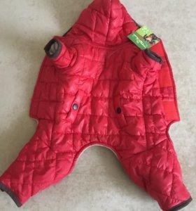Курточка для маленьких пород собак