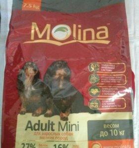 Корм для взрослых собак, весом до 10 кг