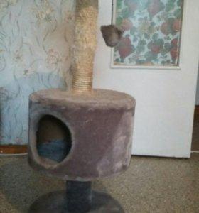 Дом кота с когдетралкой