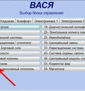 Vag-com , Вася диагност