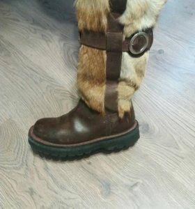 Унты .собака