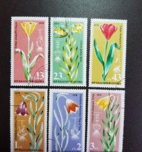 Набор из 6-ти марок из Болгарии 1978 года
