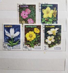 Набор из 5-ти марок из СССР 1977 года