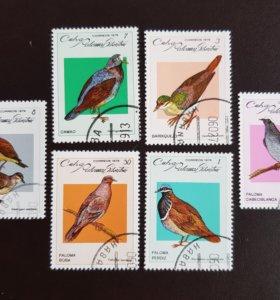 Набор из 6-ти марок из Кубы 1979 года