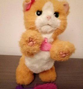 Милый котик Дейзи