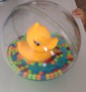 Утёнок в шаре
