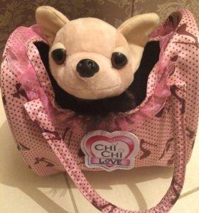 Chi chi Love, щенок с сумочкой