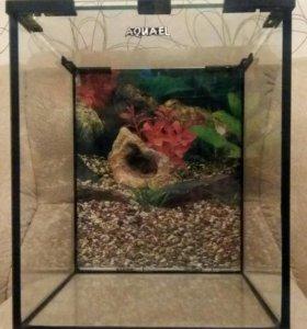 Aquael Shrimp Set 20 LED нано-аквариум