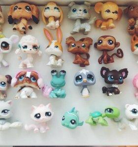 littlest pet shop, LSP