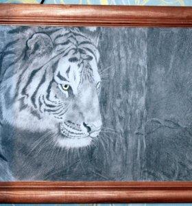 Картина простым карандашом. Тигр. Графика