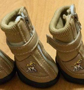 Ботинки для собаки (размер S)