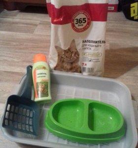 Для котов и кошечек