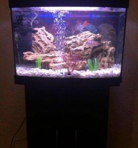 Продам аквариум 60 л