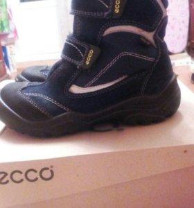 Экко зимние ботинки