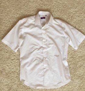 Рубашка Carat