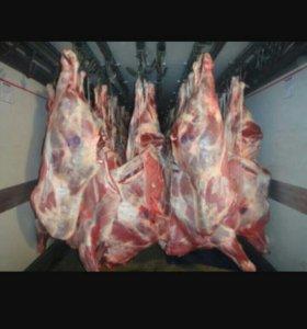 Мясо говядины молодняк (джидинское)