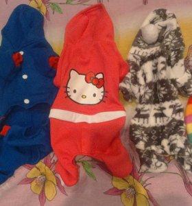 Одежда для животных.