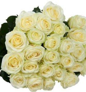 Доставка цветов (25 роз 70 см)