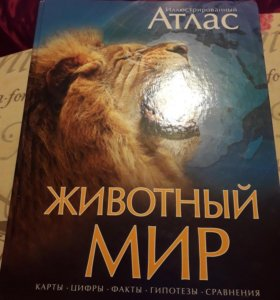 Книги энциклопедии разные.
