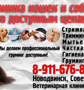 Стрижка собак и кошек!