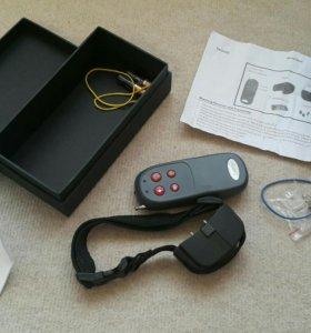 Ошейник с вибрацией и электрошоком
