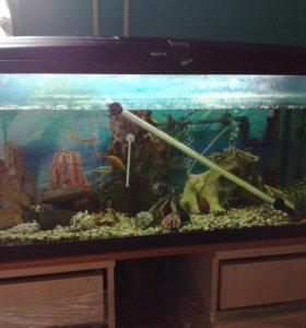 аквариум со всем оборудованием 200 литров