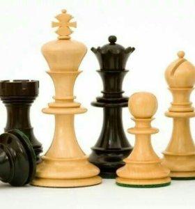 Шахматы (занятия)