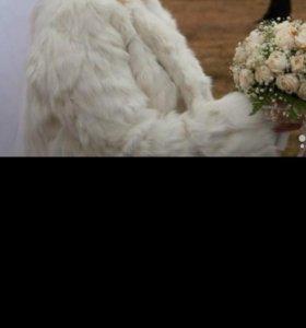 свадебная шубка.кролик
