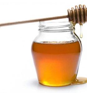 Мёд, перга, забрус (соты), прополис