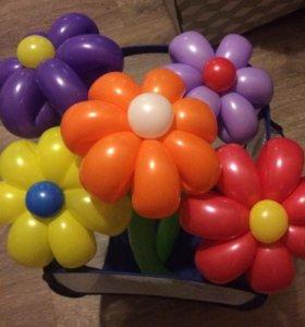 Ромашки из шариков