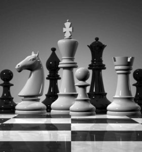 Шахматы - научите играть!