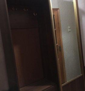 Шкаф -купе для прихожей
