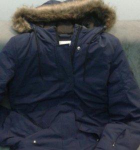 Куртка adidas с капюшоном женская размер xs