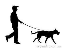 Выгул животных