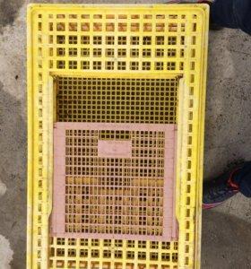 Ящики для перевозки кур